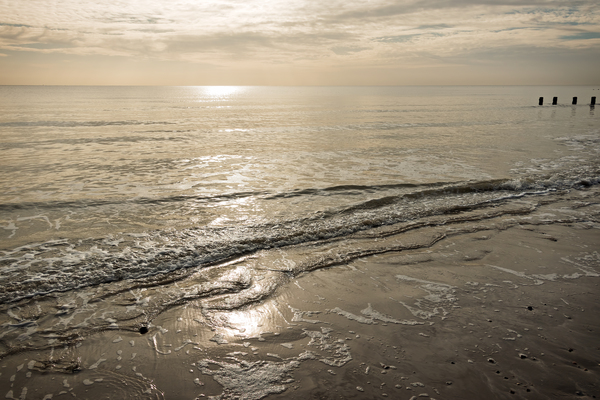 Winter sea - gold: Shoreline of Sussex, England, in late afternoon in winter.