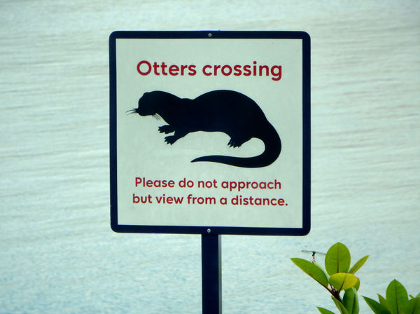 keep your distance1: sign requesting people to take care at otter crossing