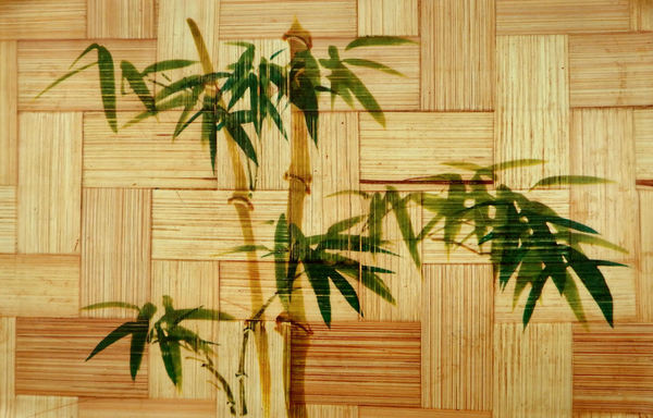 pressed bamboo background1