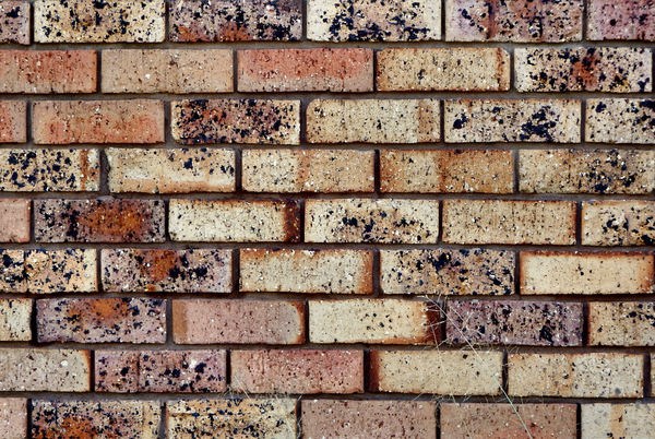 wall textures & colors39