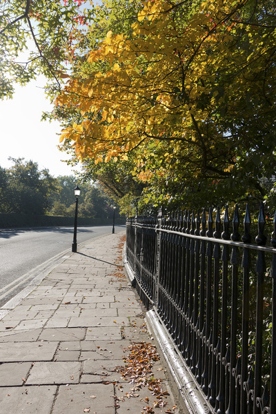 London street in autumn