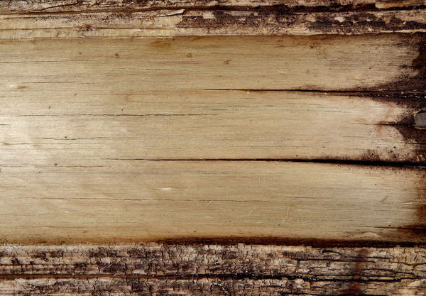 cracked wood textures1: old weathered and cracked wood surface