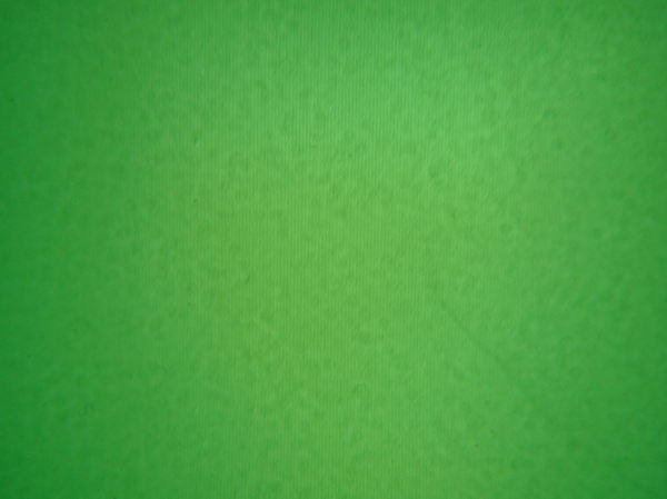 green fabric background1