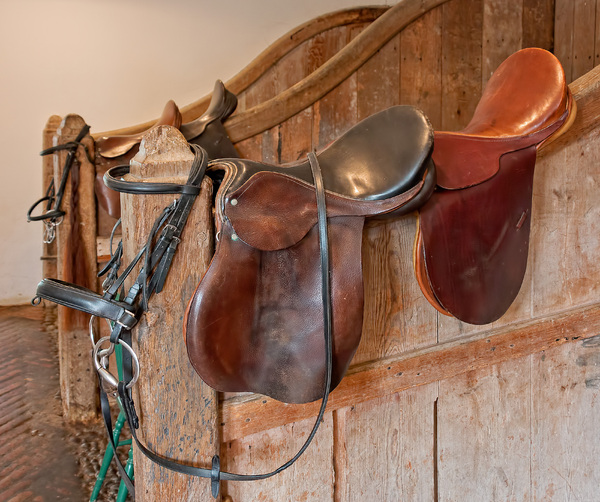 Saddles and bridles