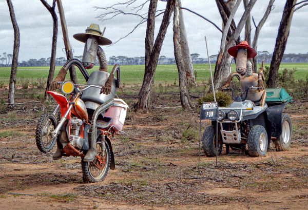 horsing around15: Aussie public farming humour  celebrating horses in roadside paddocks (public domain photography and sharing encouraged)