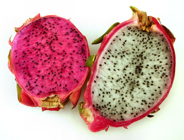 red & white dragonfruit1