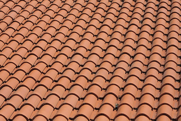 Roof texture: Roof texture