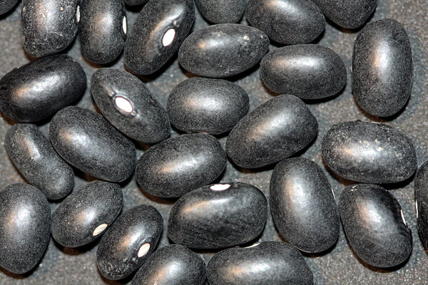 Food texture: Black Beans