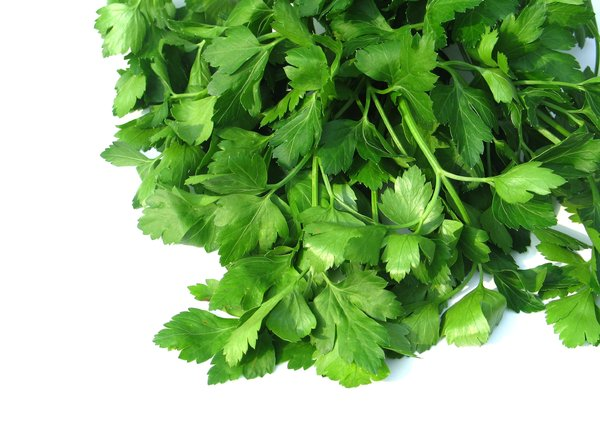 parsley 1