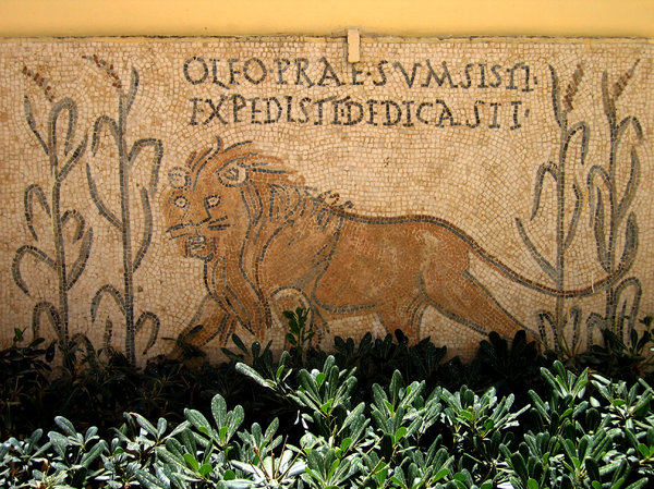 Carthage lion