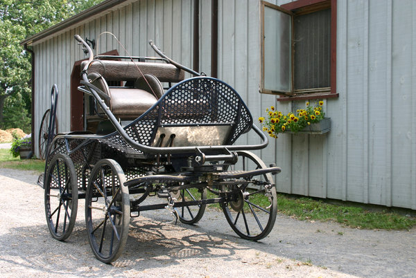Marathon Horse Cart: A marathon cart used for driving horses