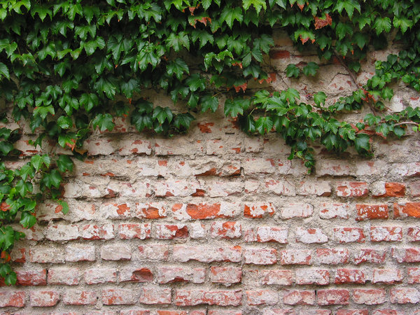textura brickwall 45: