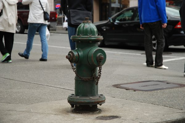 Fire Hydrants 3