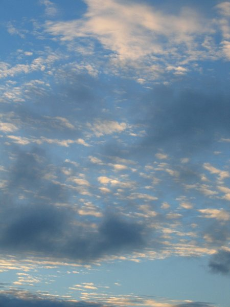 ~ Cloudy Sky 2: Textured clouds over Kawau Bay, New Zealand