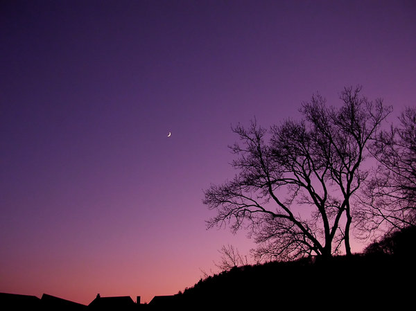 New Moon at Dusk 1: Shot of the new moon at dusk. Sky has been digitally enhanced.
