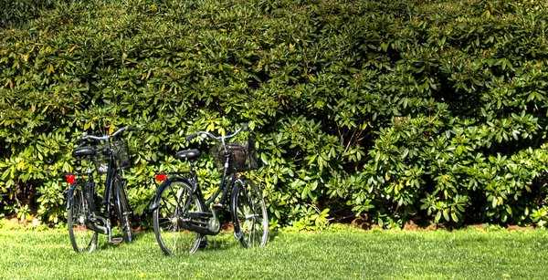 Bikes - HDR: Two bicycles on a lawn