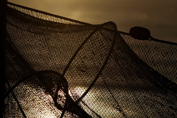 Fishing net in baacklight