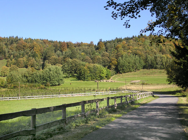 Road towards the hill