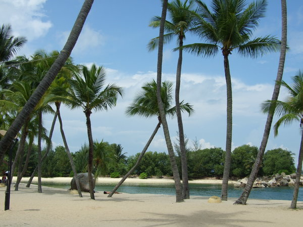 tropical paradise?: beach scene in Singapore