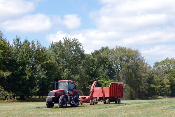Harvesting 1: Harvesting the hay during the late summer. I've placed no restrictions on most of my photos, but I would really appreciate imput & comments! If it is possible to credit me, Christine Landis, please do.