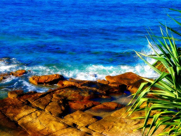 Beautiful Shore: Waves splash against flat rocks on the Queensland coast.