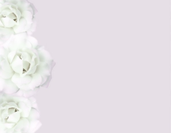 White Rose Border 2: Borders made with white roses. Please use these images only within sxc's Terms of Use. There are restrictions even for images marked