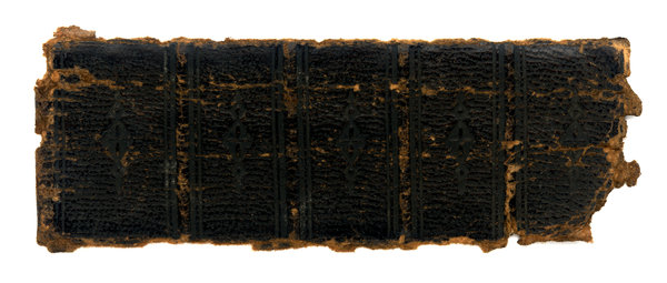 Spine: The spine of a very old book.Please visit my stockxpert gallery:http://www.stockxpert.com ..