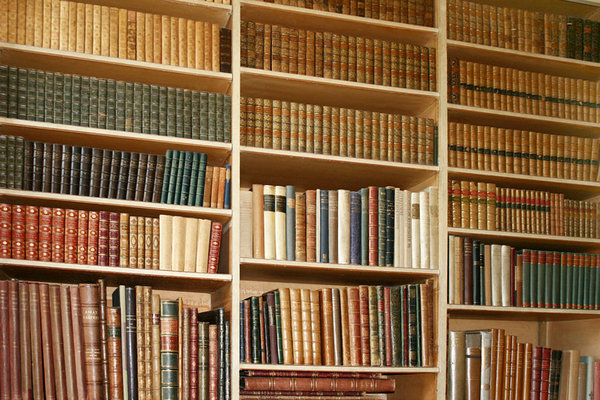 Bookcase: Collection of old books found in country house.