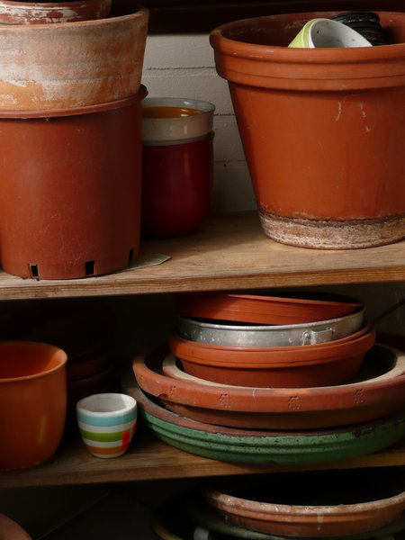 Pottery: Tools for planting