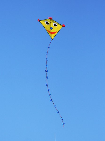 kids kite: a typical kids kite