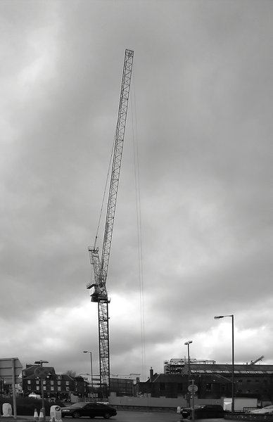 Crane: Crane in black and white