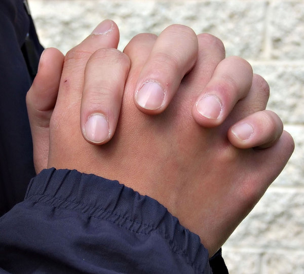 hands5: man's folded hands - as in prayer