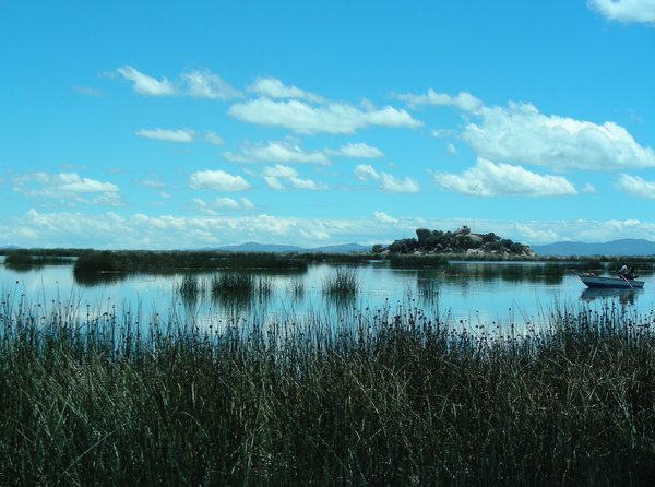 lake titicaca: none