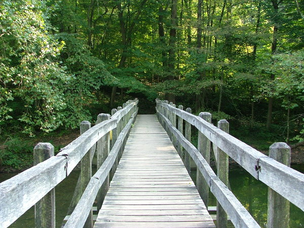 Wooden bridge in the summer: Wooden bridge over a river in the summer in John Bryan State Park, Ohio
