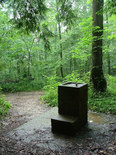 drinking fountain in the woods