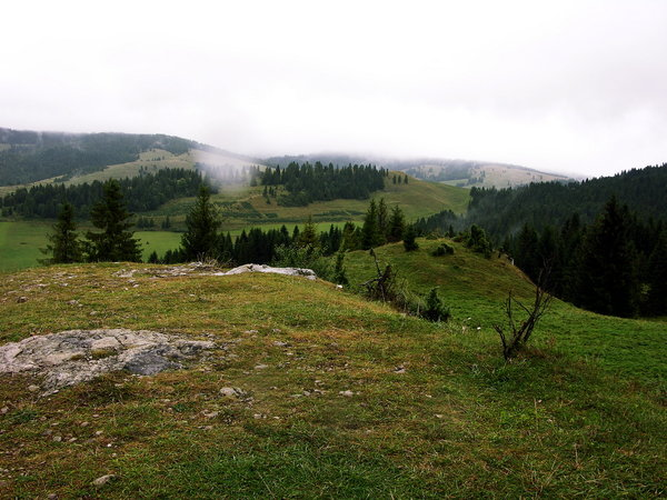 in Polish mountains 1