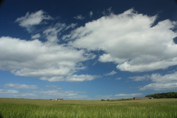 Big Sky: Fields with a dramatic, big sky background