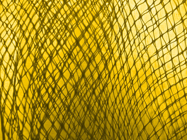 enmeshed in gold: thin nylon mesh - netting