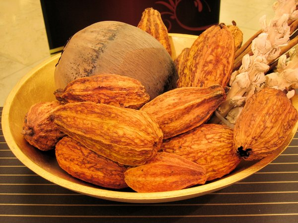 cocoa fruits 3