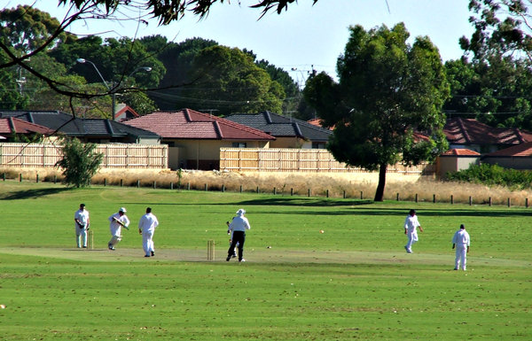 suburban cricket game: local suburban cricket enthusiasts playing game