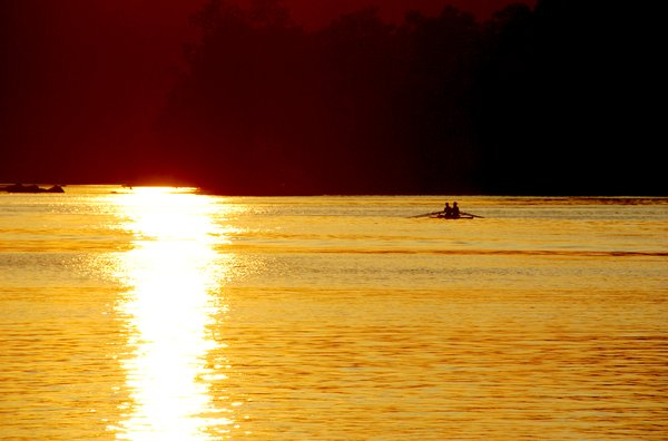 Rowing in Gold: Rowing on the Potomac River, Washington, DC at sunset