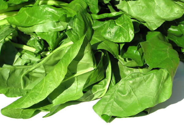 swiss chard: none