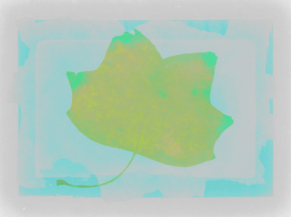 Background 15: A series of background colourswith a leaf shape.Please support my workby visiting the sites wheremy images can be purchased.Please search for 'Billy Alexander'in single quotes atwww.thinkstockphotos.comI also have some stuff atdreamstime - Billyruth03Look