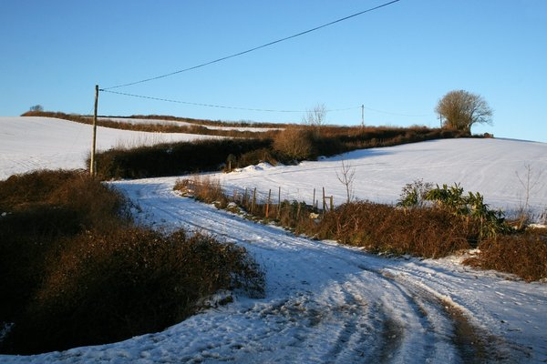 Snowy country lane 1