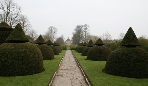 Topiary: Conical topiary abutting a garden path in the grounds of a manor house in Somerset, England.