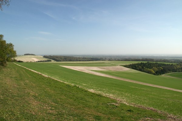 Sussex plain: Fields in Sussex, England, where the South Downs meet the coastal plain.
