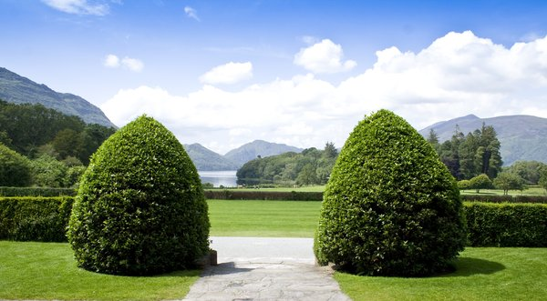 Gardens, Muckross House: here is a few from front of house at muckross gardens.