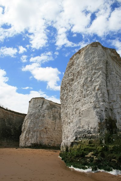 Chalk cliffs: Chalk cliffs on the coast of Kent, England.