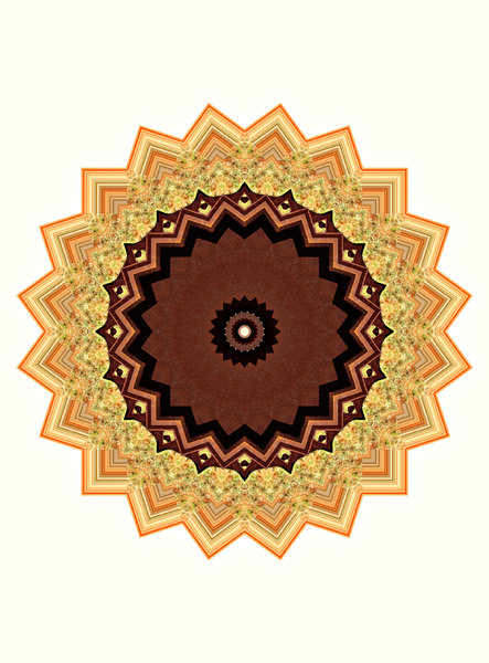 brown-tooth mandala