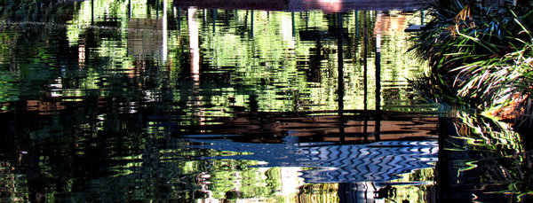pool reflections2